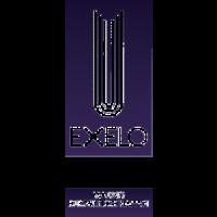 exelo-training-development